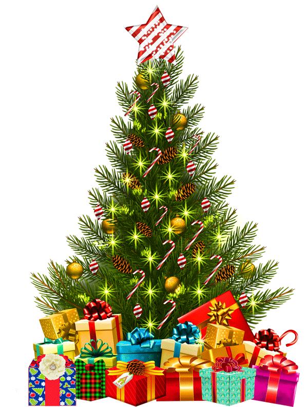 Donate to Aspleycare Christmas Hamper Appeal